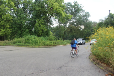 Bicycles and cars ride through the 6100 block of Central Avenue in Edgebrook, where the planned extension of the North Branch Bicycle Trail is slated to cross Central Avenue.