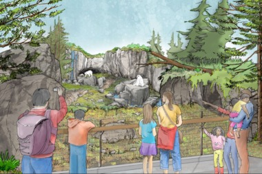 An artist's rendering of the new polar bear exhibit scheduled to open in 2016 at the Lincoln Park Zoo.