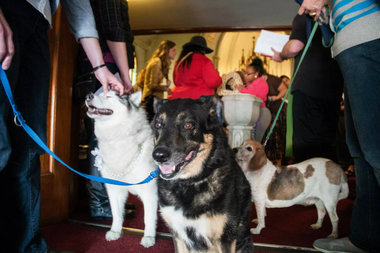 Residents are invited to bring their pets to a special ceremony at the Bridgeport church.