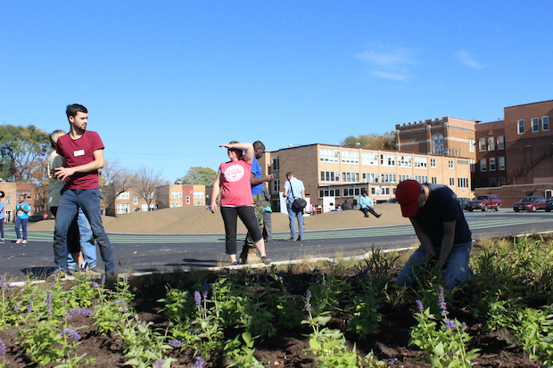"The ""Space to Grow"" initiative brings green space to four CPS schools."
