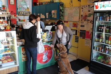 Jackalope Bash to Feature Bands, Psychic Readings, Doggie Food Truck ...