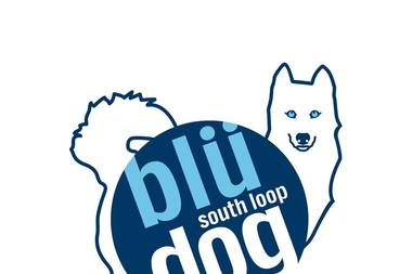 Blü Dog Play Stay Spa is expected to open in April at 2000 S. Wabash Ave. The doggie day care's owner said he was inspired by his Siberian husky, Tasha.