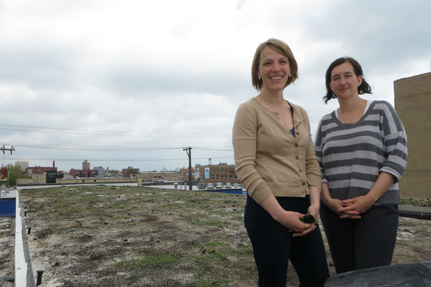 The Roof Crop is a rooftop farm in development atop a West Town warehouse.
