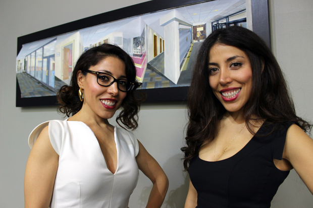 Illinois College of Optometry student Sepideh Omidghaemi (right) and her twin sister Los Angeles-based artist Saeideh Omidghaemi teamed up to create a work of art that shows a whole new way our eyes play tricks on us.