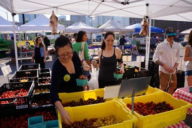 The Green City Market Fulton opens for the season Saturday.