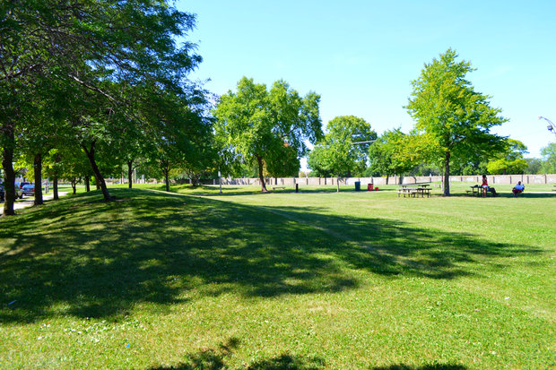 Triangle Play Lot Park will get a spate of fruit-bearing trees for a mini-orchard.