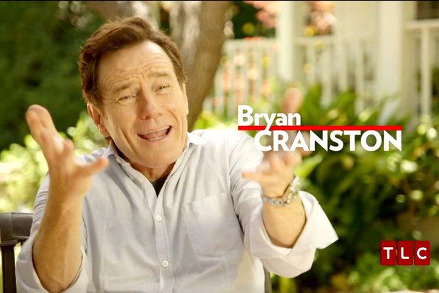 bryan cranston dating history Bryan cranston - topic videos  eddie redmayne really loves bryan cranston's hilarious vintage dating  'power rangers' star bryan cranston reveals his history.