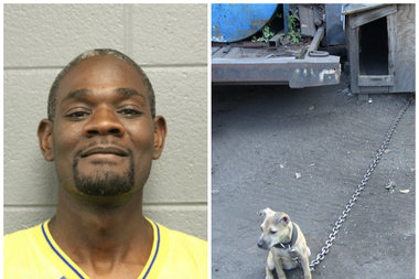 Clifford McNeil, 43, is accused of running a dog-fighting ring out of his home in Fuller Park, according to police.
