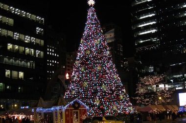Chicago Christmas Tree Gets New Home At Millennium Park - Downtown ...