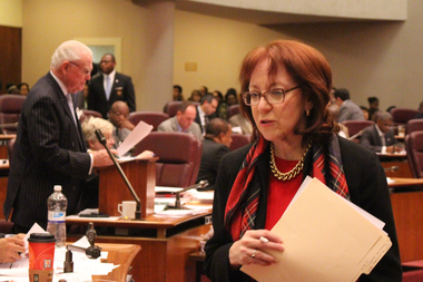 Ald. Michele Smith insists community voices on the North Branch plan