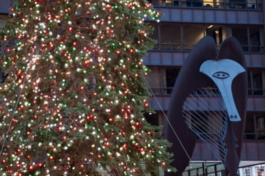 the chicago christmas tree in daley plaza - When Is Christmas In 2015