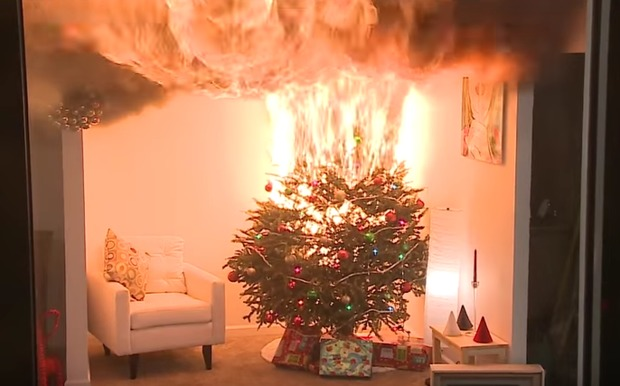 Video: Christmas Trees Can Burn In 30 Seconds (& Where To