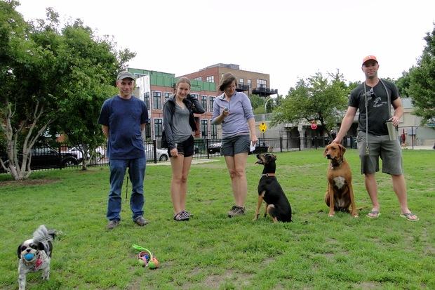 New Brighton Park Dog Friendly