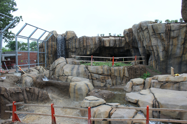 The renovated polar bear habitat has a waterfall, rock features and more room for polar bears to roam around.