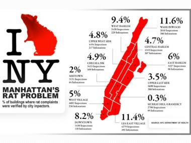 Uptown Neighborhoods Infested With Rats, City Data Says