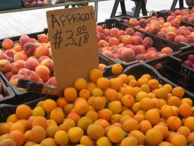 The Union Square Greenmarket has become increasingly popular with food stamp users.