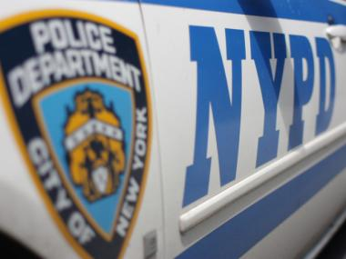 Two officers were injured arresting a rowdy couple at a Bronx movie theater Thursday night, July 26, 2012, the NYPD said.