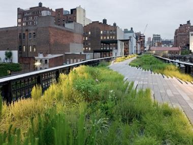 The High Line is seeking to add four new food vendors in 2012.