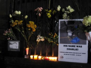 Charlie the carriage horse was 15 years old when he died in late October 2011. Advocates recently held a candlelight vigil to honor the horse.