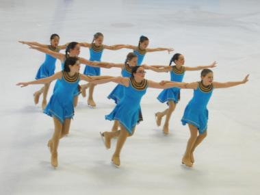 Central Park Ice's Pre-Juvenile team.