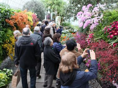 "Visitors to the New York Botanical Garden's Orchid Show walk between ""the green walls"" designed by French botanist Patrick Blanc"