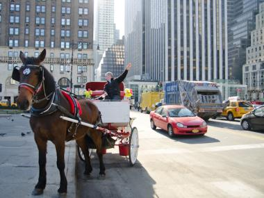 A horse-drawn carriage ride in Central Park, March 12, 2012.