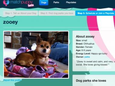 A Queens resident set up MatchPuppy.com, a social networking site for dogs, to help rover find a date.