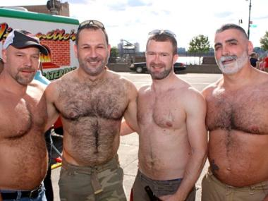 Gay bears hairy