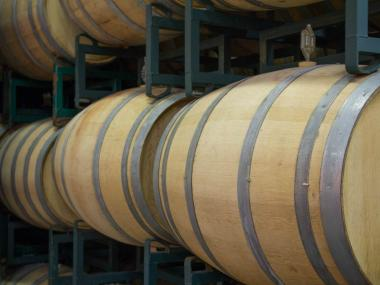 The winery has around 100 barrels of wine currently being made. Each barrel makes about 240 to 288 bottles of wine, Rando said.