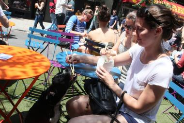 Jamie Plevy, 28 of the East Village, gives her dog Russo a bite to eat at the Daylife event on Sunday.