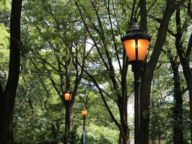 Daytime lighting in Riverside Park has residents concerned over energy and financial waste, as well as a potential infrastructure problem with the lights.