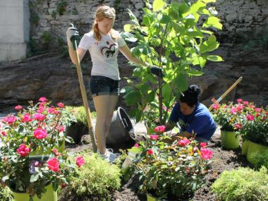 Workers from the New York Restoration Project helped revive the garden at Robert Fulton Terrace last week. Tenants began restoring the backyard last year, then were assisted by the nonprofit, which provided workers and materials.