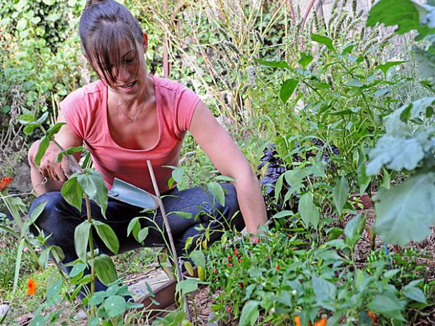 Rebecca Bullene, 32, plants a fall garden in the backyard of her Bushwick, Brooklyn, home, Sept. 14, 2012.