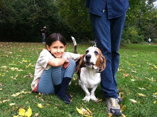 The North Slope Basset Association, helmed by Park Slope blogger Erica Reitman, had a second annual gathering in Prospect Park on October 14, 2012.