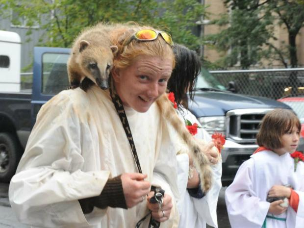Dozens of different types of animals were blessed at the annual fest for St. Francis Day.