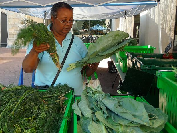 Corbin Hill Farm expanded its share program to Bronx Community and Lehman College in the Bronx this summer. More flexible than a traditional CSA, Corbin Hill requires payment just one week in advance, and members have the ability to opt out any time during the season.