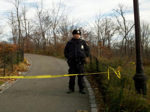 A woman was stabbed by her live-in boyfriend in Central Park on December 5, 2012.
