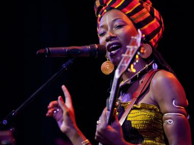 globalFEST brings together international sounds to Webster Hall, Jan. 13, 2013.
