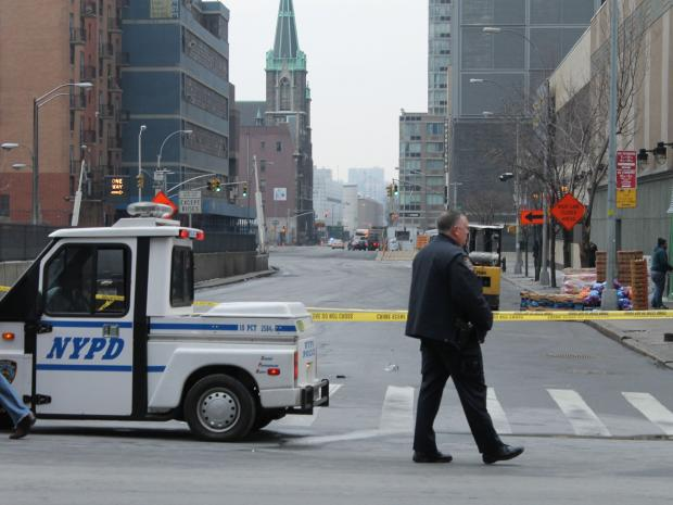 Shu Ying Liu, 69, was fatally struck by a car on 41st Street and Ninth Avenue on Feb. 5, 2013, officials said.