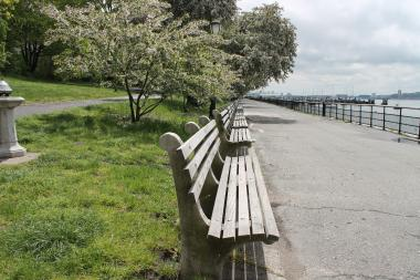 A woman was allegedly raped in Riverside Park early Thursday morning, June 6, 2013.