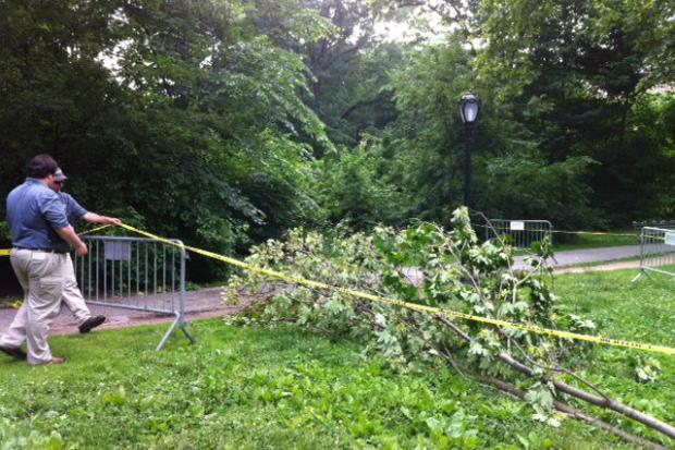 An unidentified woman hospitalized after being struck by a falling tree branch in Central Park West on Tuesday June 11, 2013.