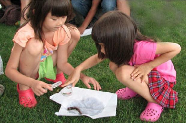 During workshops, children will study ecology and interact with animals.