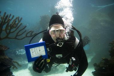 Coney Island Aquarium Volunteer