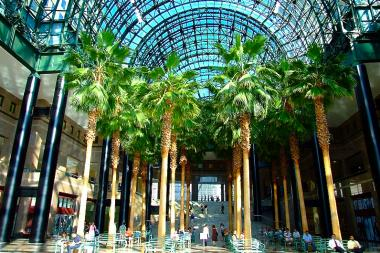 Free movies are on the way to the Winter Garden atrium.