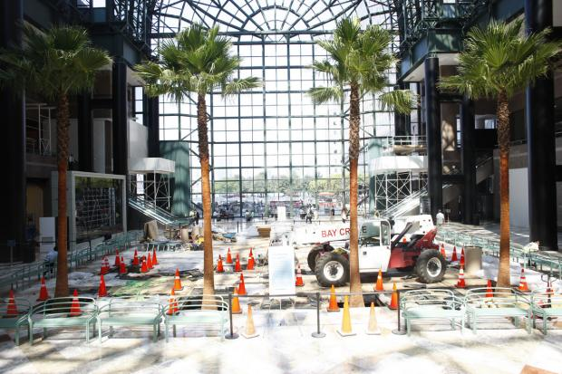 Brookfield Place's Winter Garden at 220 Vesey St. replanted younger palm trees after the existing ones outgrew the building.