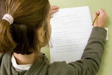 Students in grades 3–8 take the State English Language Arts (ELA) test each spring.