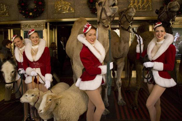 The furry four-legged stars of the Radio City Christmas Spectacular visited the venue Tuesday, Oct. 29, 2013, for a photo shoot with costars The Rockettes.