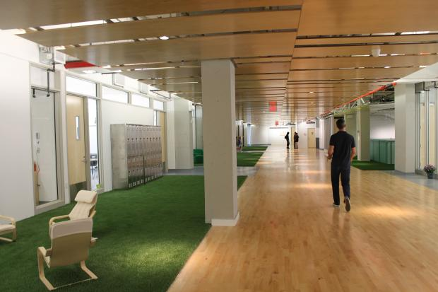 The building has transparent classrooms and Astroturf lawns outside the rooms.
