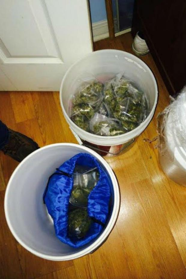 "Police arrested two men for running a ""high-volume"" marijuana operation in East Harlem Friday that operated out of the basement of a brownstone, recovering $35,000 worth of the drug, guns, $21,000 in cash, two pit bulls and an eight-foot-long python. Police say that Mark Hansen and Manuel Bey, both of The Bronx, operated the drug ring out of 1 E. 124th St. from 11:30 a.m. to 8 p.m. seven days per week."