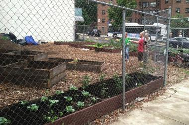The lot at York and Gold streets in Vinegar Hill will soon be a member-based community garden.